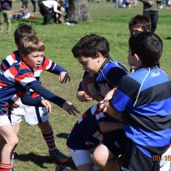 rugby-04